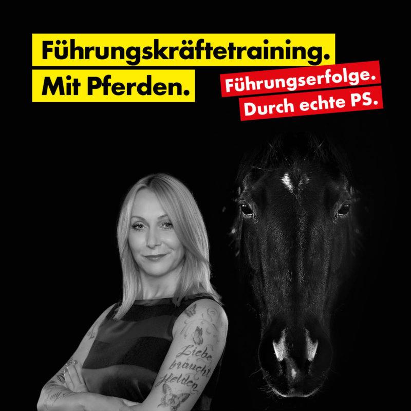 Führungskräftetraining mit Pferde